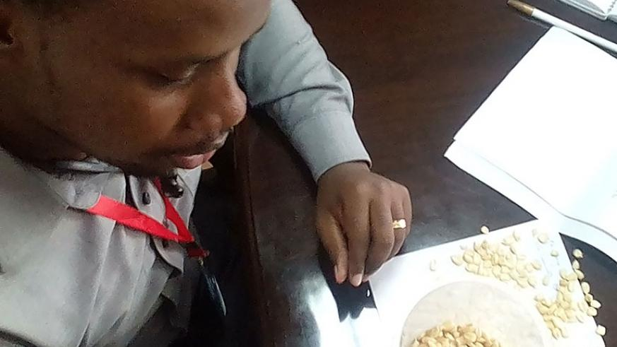EAX's Ngoga explains how climate change is affecting the quality of maize during the interview. (Stephen Nuwagira)