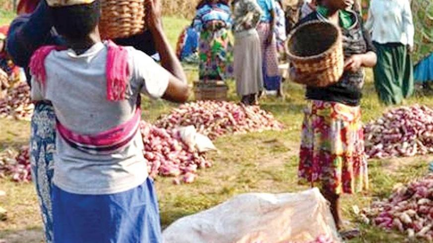 Women form a big part of the informal sector, according to different studies. / File.