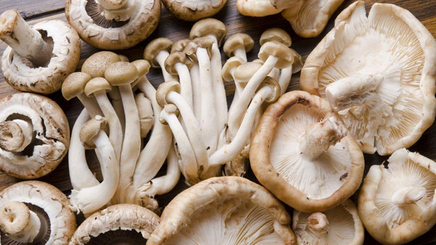 Mushroom and soya bean products should be eaten regularly as they contain anti-cancer elements.  / Net.