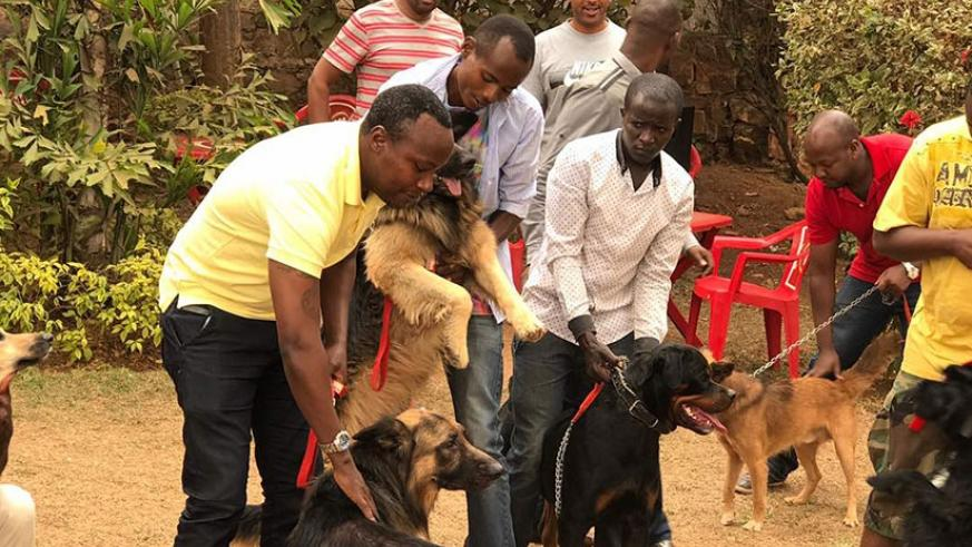 Some of the members of the Rwanda Dog Lovers Association with their dogs in Kigali recently. courtesy.
