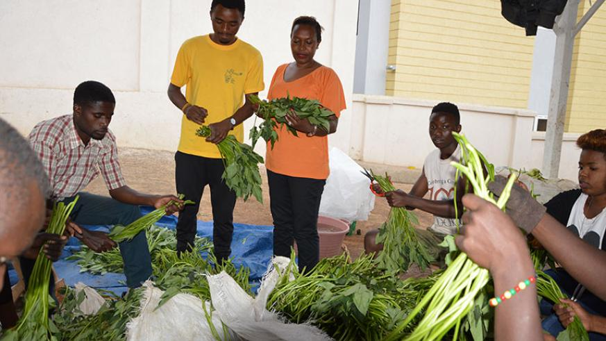 Nibagwire (R) with some of her workers as they prepare potato leaves before being exported to Europe. / Sam Ngendahimana