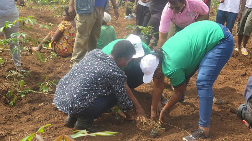 Minister of Lands and Forestry, Francine Tumushime, (right) and Kicukiro Mayor, Jeanne Nyirahabimana, join residents of Kicukiro District in a tree planting drive yesterday. Over 6....
