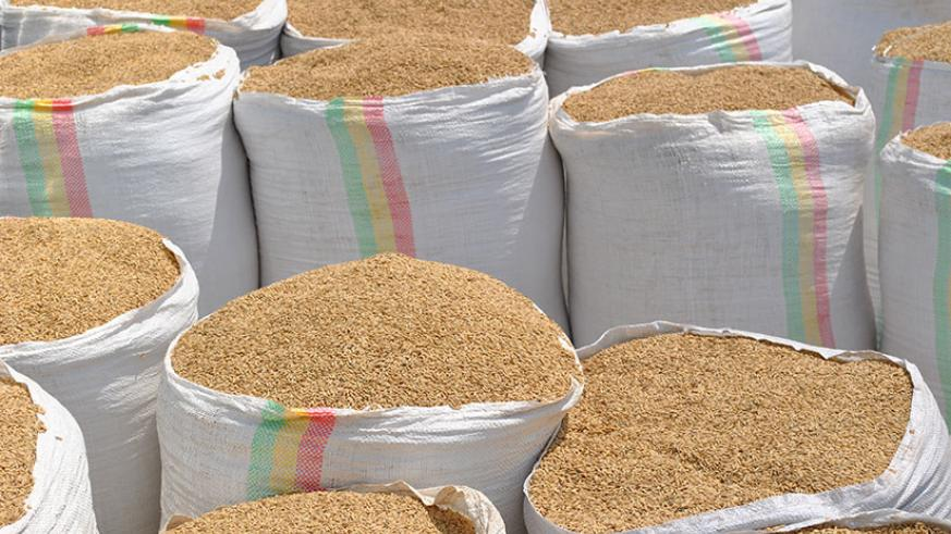 Over 3.9 million kilos of cereals were exported last week.
