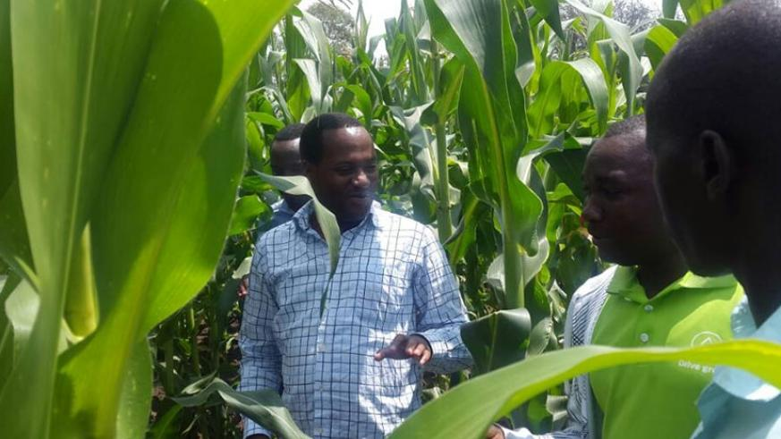 An agronomist talks to farmers in Gatare, Ruhango during the officials' tour on Thursday. M. Nkurunziza.