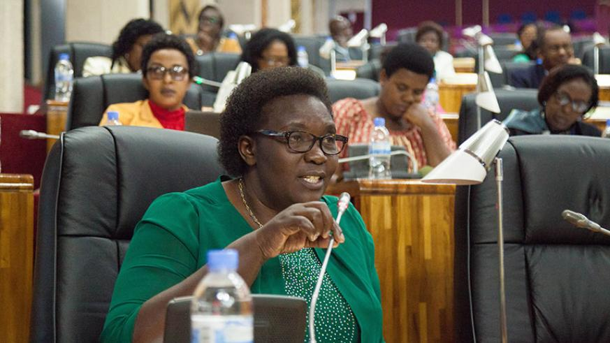An MP gives a comment in a session in parliament recently. Nadege