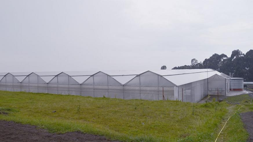 The Horizon SOPYRWA Greenhouse Project aims at contributing to the agro-economic development of Rwanda, increased potato seeds quality and sustainability, food safety and security,....