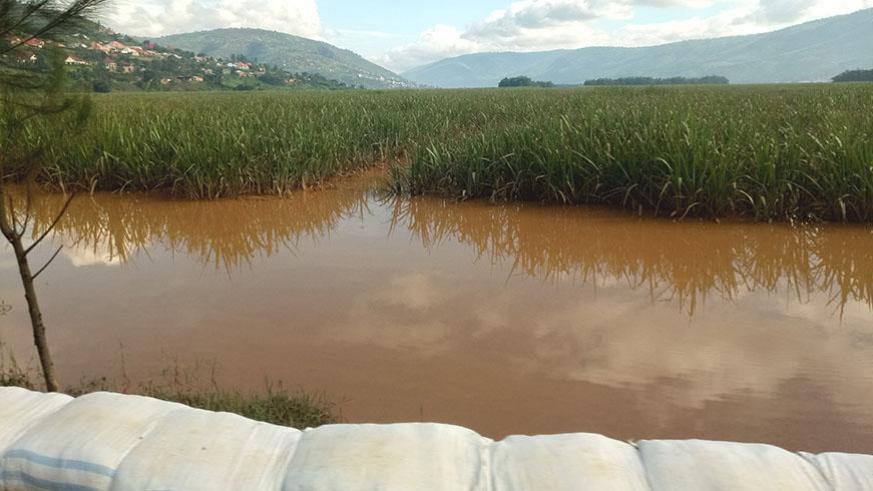 Farmers call for agricultural insurance products as